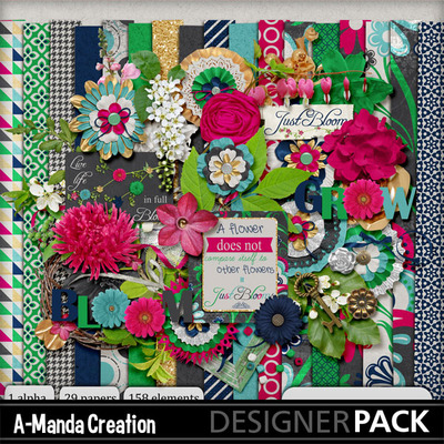 http://s3.amazonaws.com/image-previews/images/0116/2123/Just_Bloom_Kit.jpg
