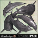 Dolphins2_small