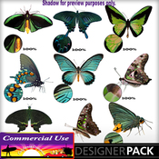 Web_image_preview-greenbutterflypack_01_medium