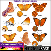 Web_image_preview-orangebutterflypack_01_medium