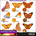 Web_image_preview-orangebutterflypack_01_small