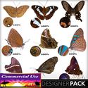 Web_image_preview-brownbutterflies_small