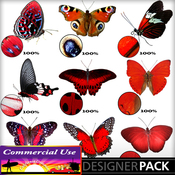 Web_image_preview-redbutterflypack_01_medium