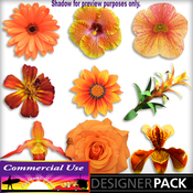 Web_image_preview-orangeflowerpack_03_medium