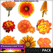 Web_image_preview-orangeflowerpack_02_medium