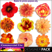 Orange_flowerpack_01_preview-01_medium
