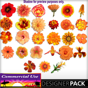 Web_image_preview-orangeflowerbundle_01-03_medium