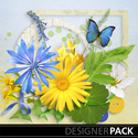 Summer_meadow-001_small