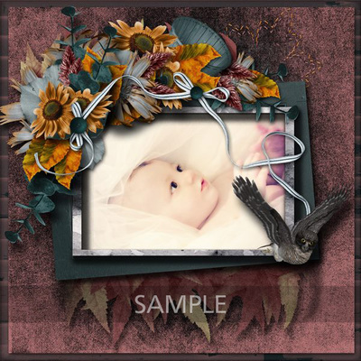 Lp_septemberdays_lo1_sample