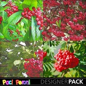 Red_berries1_medium