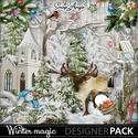 Sa-winter_magic_pv01_small
