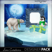 North_pole4_medium