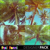 Sun_and_palm_trees1_medium
