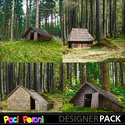 House_in_the_woods1_small