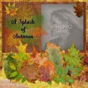 A_splash_of_autumn_12x12_book-001_medium