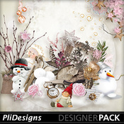 Plidesigns_wintergift-pv_medium