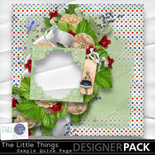 Pbs_the_little_things_qpsample_medium
