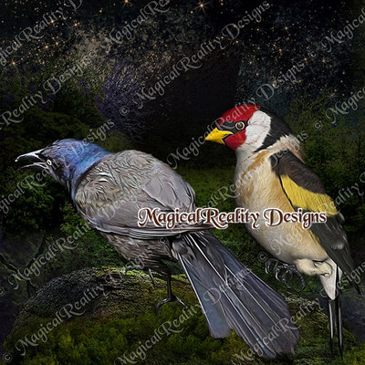 Magicalreality_paintedbirds4