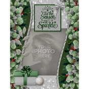 Silver_green_christmas_8x11_pb-001_medium