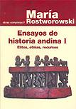 Ensayos de historia andina I