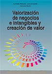 Valorización de Negocios e intangibles y creación de valor