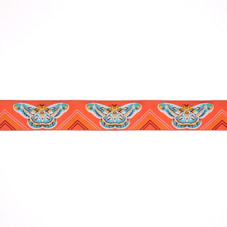 1-1/2'' Anna Maria Horner Moths Ribbon Orange/Aqua