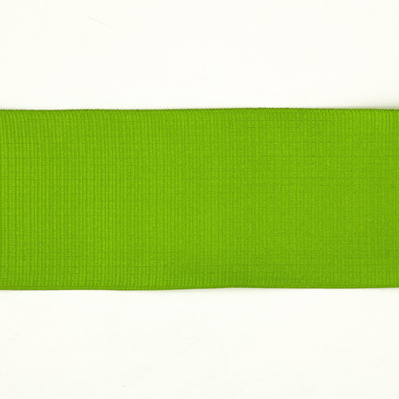 2'' Grosgrain Wired Ribbon Parrot Green