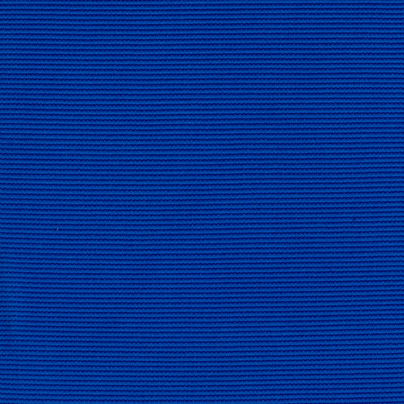 Activewear Nylon Spandex  Solid Royal Blue Fabric By The Yard