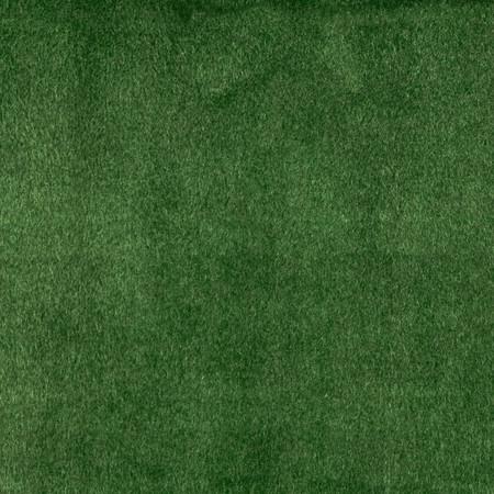 Alpine Upholstery Velvet Moss Fabric