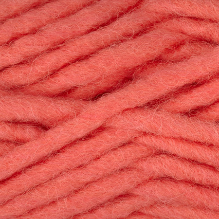 Bernat Roving Yarn Coral