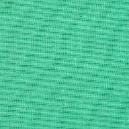 Cloud 9 Organic Cirrus Solid Broadcloth Mint Fabric By The Yard