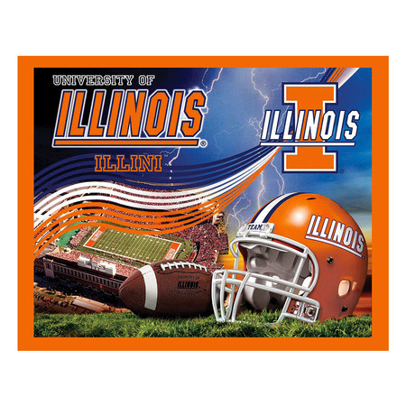Collegiate Fleece Panel University of Illinois Blue Fabric By The Yard