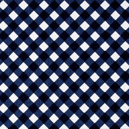 Cotton Denim Gingham Print White/Blue Fabric