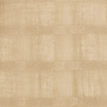 Eroica Fancy Stripe Sheer Khaki Fabric