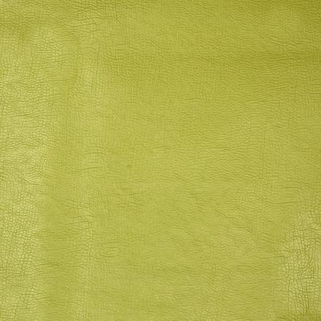 Fabricut 03343 Faux Leather Oasis