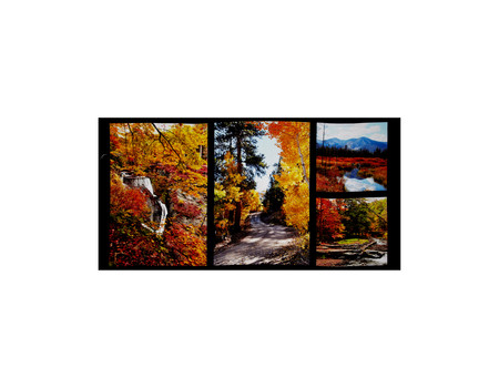 Fallscapes Digital Print 24 In. Panel Multi  Fabric By The Yard