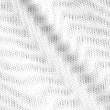 Home Dec Canvas Cream Fabric