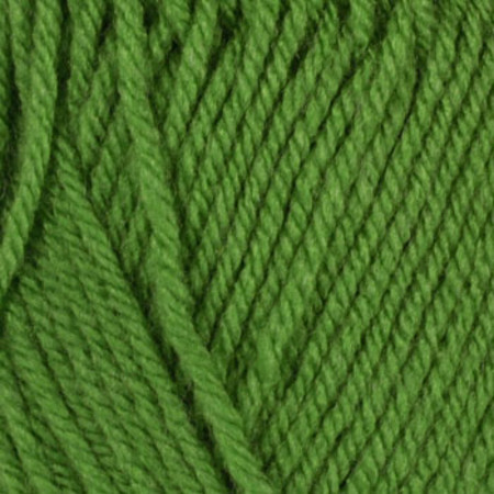 Lion Brand Vanna's Choice Yarn (171) Fern