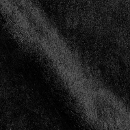 Minky Velvet Soft Cuddle Black Fabric By The Yard