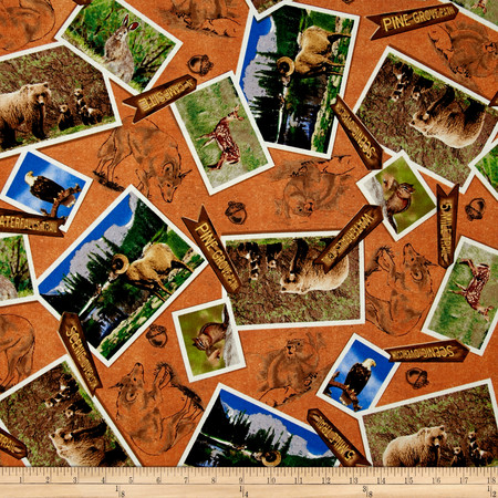 Our National Parks Animal Photos Brown Fabric