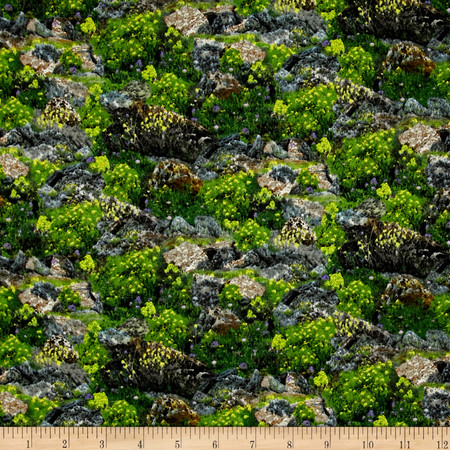 Our National Parks Rocks & Flowers Multi Fabric