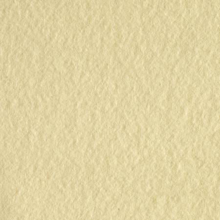 Polar Fleece Solid Light Yellow Fabric By The Yard
