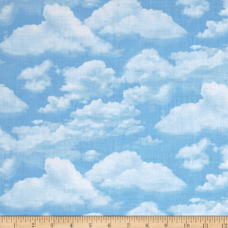 Timeless Treasures Beach Pass Sky Fabric By The Yard
