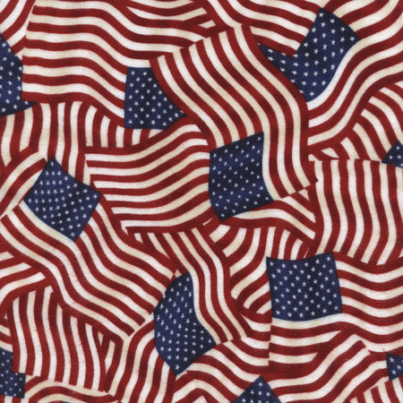 Timeless Treasures Flannel Flags USA Fabric