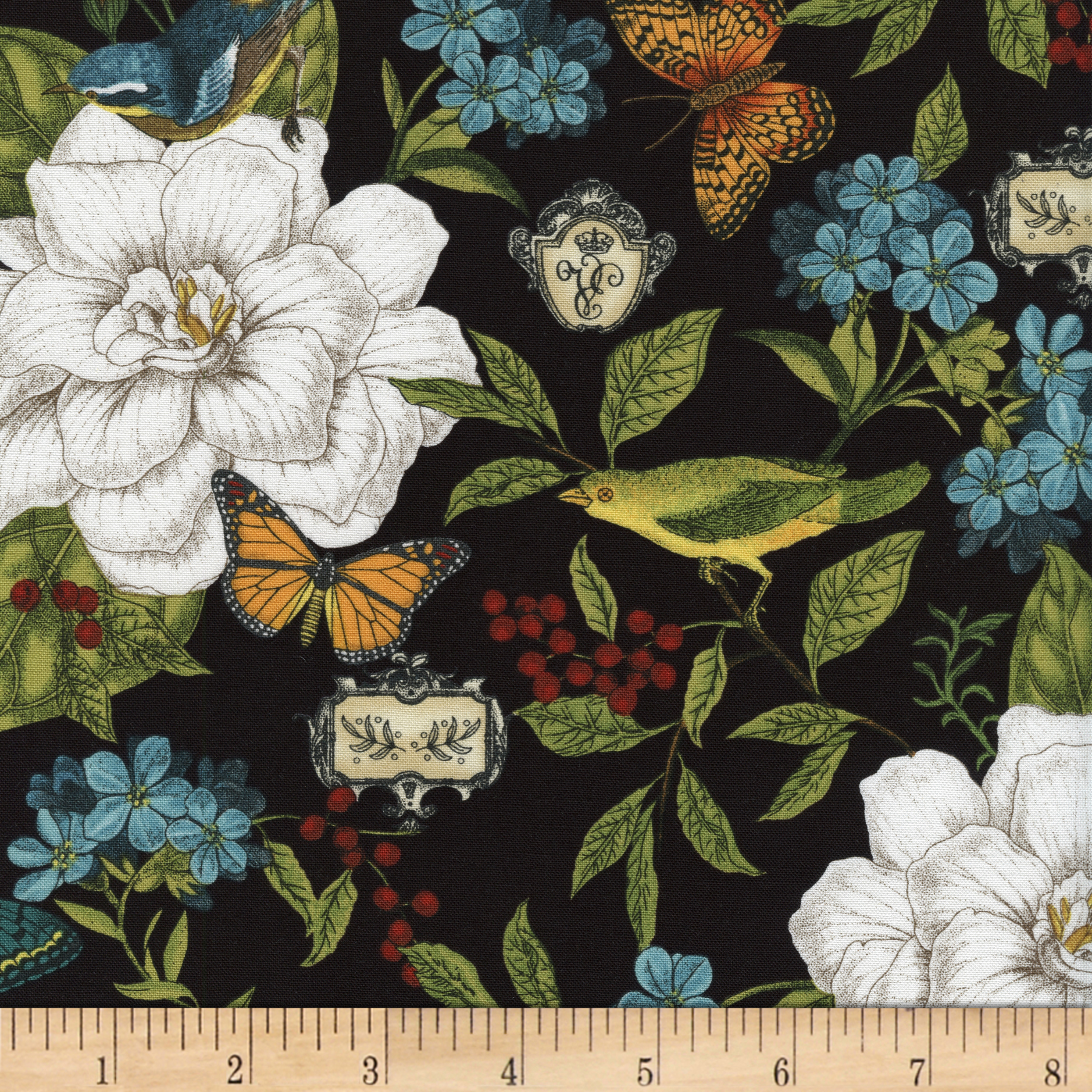 Timeless Treasures Modern Curiosity Allover Black Fabric By The Yard