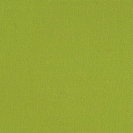 Twill Grass Green Fabric