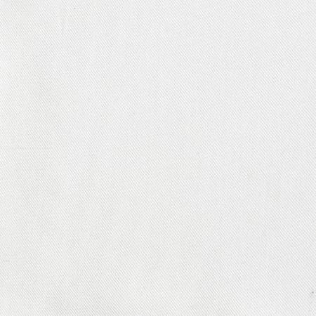 Telio Viscose Twill White Fabric By The Yard