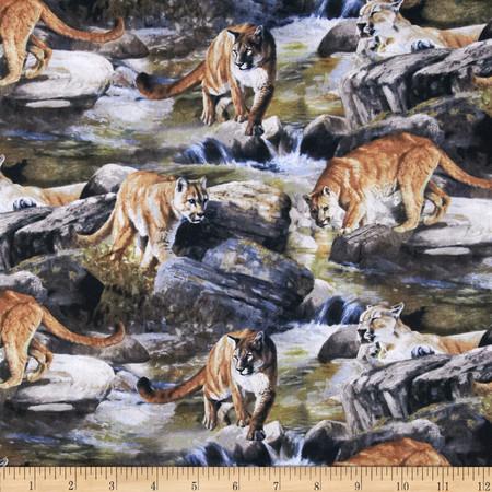 Wild Wings Boulder Creek Scenic Multi Fabric