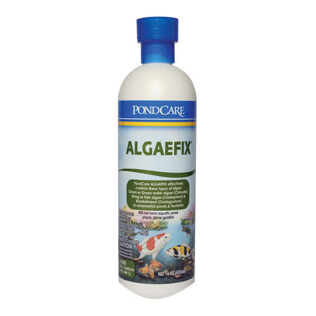 API Algaefix Algae Control for Ponds  473ml