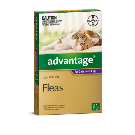 Advantage Flea Treatment for Cats 4kg+ 1pk